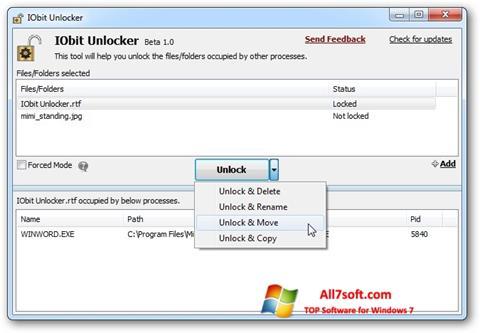 Στιγμιότυπο οθόνης IObit Unlocker Windows 7